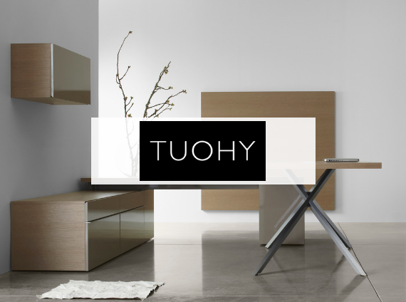 touhy private office setting